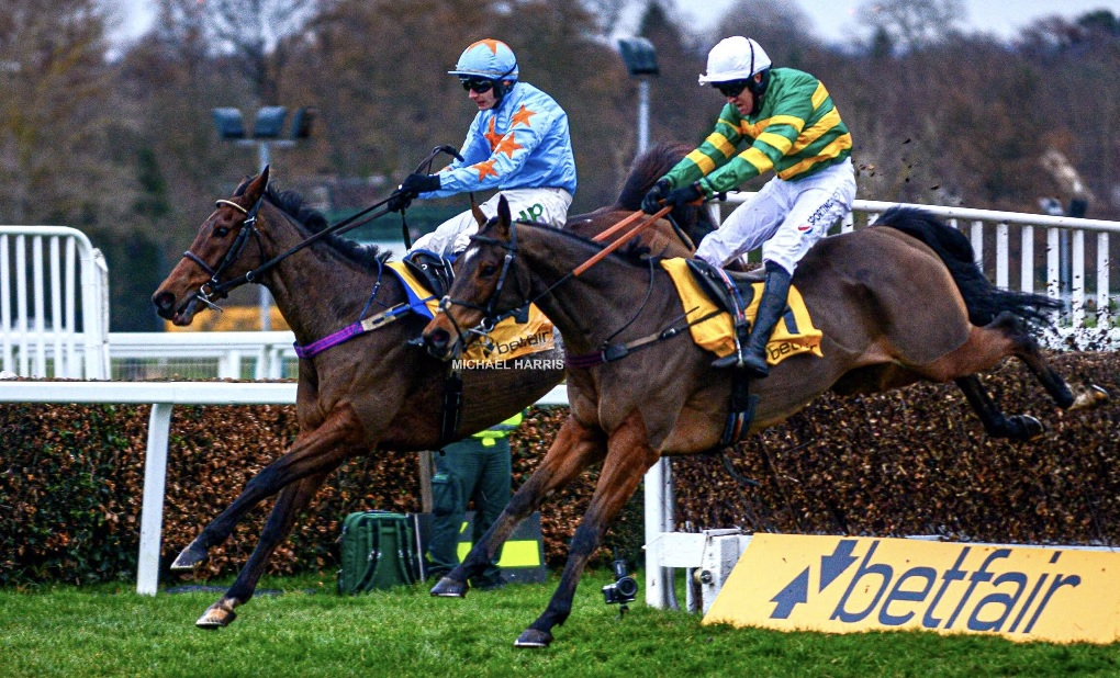 2019 Tingle Creek